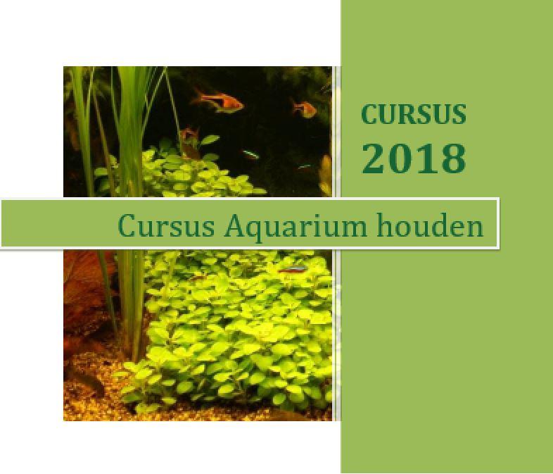 2018-cursus-aquarium-houden-1